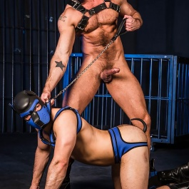 Laisse MR S LEATHER