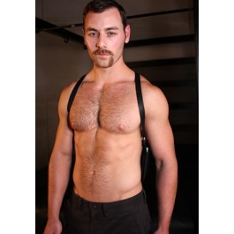 Harness, Accessories, Leather, Harness, Leather, Accessories