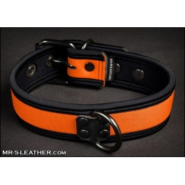 Puppy Collar/Leash